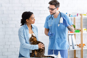 Different Types of Pet Medication